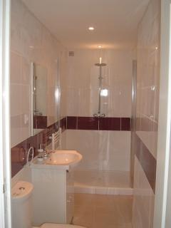 Ensuite Bathroom for downstairs bedroom