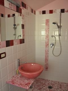 bathroom with shower, wc,  bidet and washbasin