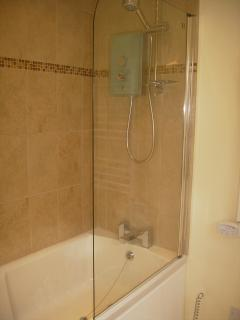 Full size bath and shower with grab rail