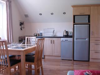 Kitchen /dining area