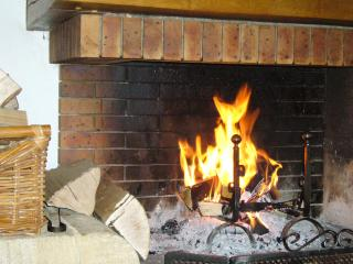 Log Fire in the lounge