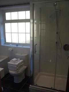 Double shower unit