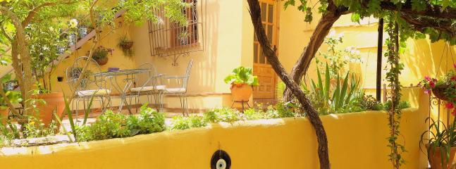 Part of the terrace and entrance of the studio in our backyard