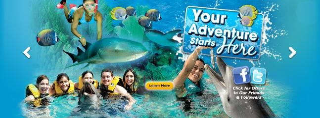 Free ocean world  entrance tickets/ the park is few steps away from the resort