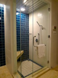 Shower cubicle with steam facility in master bathroom