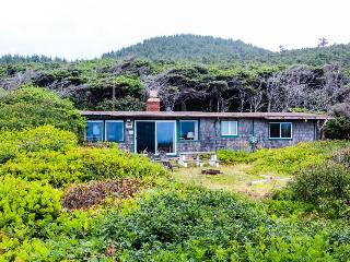 Dog-friendly oceanfront cabin in the trees with gorgeous views