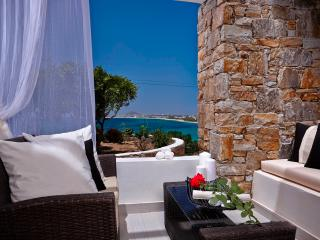 Villa Meadow on the beach Villa Paradise Plaka-Naxos