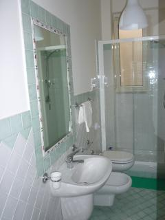 Bathroom n. 2  (with shower)