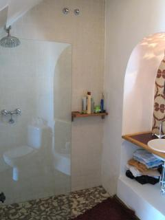 Downstairs bathroom and shower with distinctive old tiles
