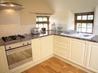 Trethellan Lodge kitchen