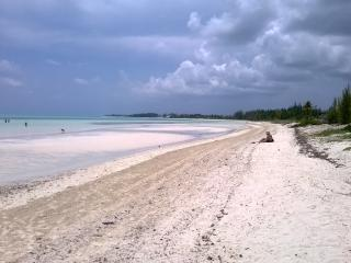 Beautiful Bahamas Quiet spacious apt. includes car