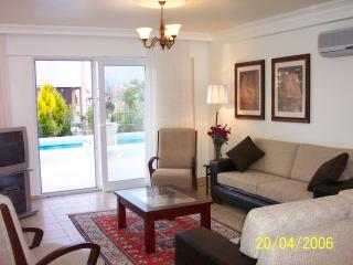 Luxuriously furnished living room overlooking the pool