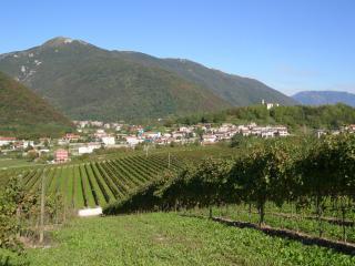 CASAVACANZE DAGOSTIN - COLLINE DEL PROSECCO