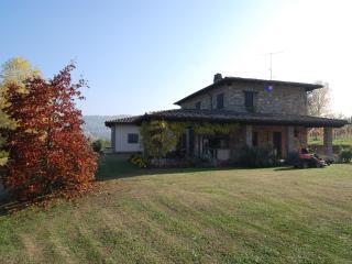 I CIPRESSI, Piacenza