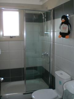 The master bedroom has an en-suite shower room