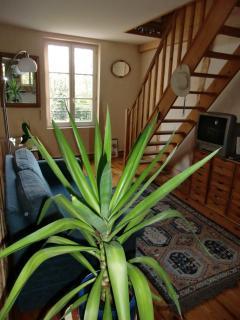 Des plantes vertes dans chaque pièce, ici le salon en mezzanine (18 m2) de la Villa Magnolia