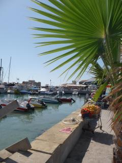 Paphos Harbour and Marina with its selection of restaurants.......