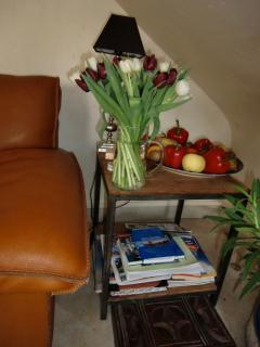 Coin et recoins, avec tout le confort d'un salon où consulter la documentation, Villa Magnolia