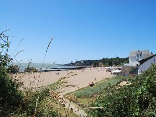 La plage de Saint-Marc (200 m de l'appartement)