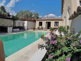 Luxe Villa only 45 m. nice airport, 30m Cannes, Saint-Paul-en-Foret