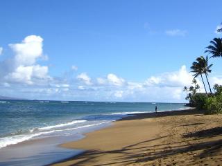 Pohailani Paradise, Napili-Honokowai
