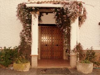 Luxury villa entrance with double doors leading into hallway