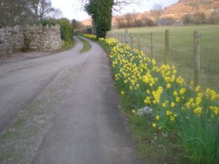 Llanwenarth Cottage