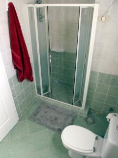 Bathroom with large two-person walk in shower
