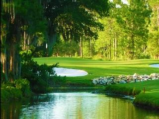 4 Room Golf SPA Guest Suite close to Busch Gardens