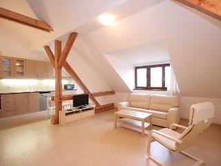 Beautiful attic flat with terrace, Prague