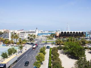 Flat entre el Puerto y la Ciudad de las Ciencias