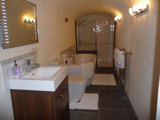 Double ended bath and double walk in shower