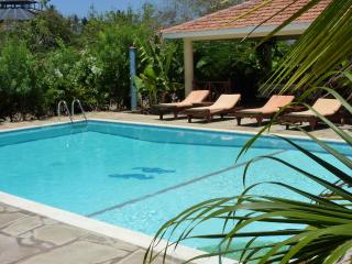 Full privacy around your private tilled swimming-pool with sunbeds.