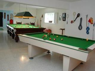 The snooker table and pool table