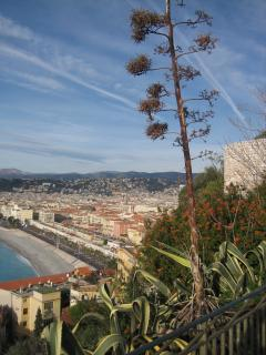 The Bay of Nice and the Promenade des Anglais as seen from the Castle