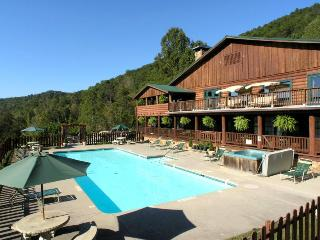 Retreats and Family Reunions love it in Elk Lodge-10 bedrooms!, Townsend