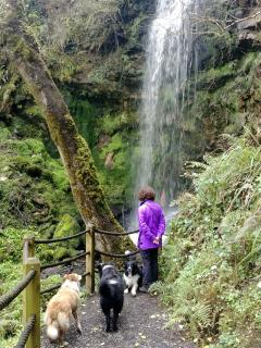 Lough Navar Waterfall Walk - 30 minutes away