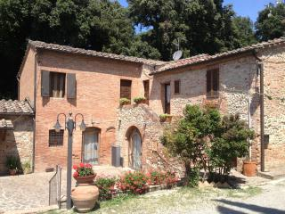 OLIVIERA DEL CHIANTI, Castelnuovo Berardenga