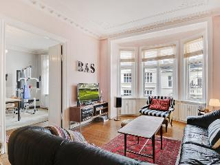 Nice Copenhagen apartment close to Parken Stadium