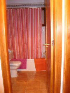 Guest bathroom with shower over