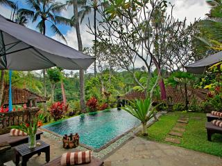 The Mahogany Villa - 2 Bedroom Ubud Nature View
