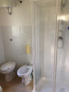 Bagno della stanza da letto con doccia