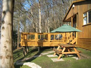 Bluebell Cottage/Cosy Cabin-nr Betws-y-Coed and Woodland Walks
