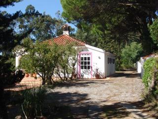 The Algarve Hillstation Villa