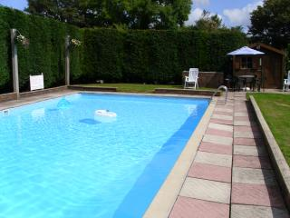 Pool with bar b que area