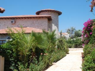 Back side of Villa Sahin Dincel - 2