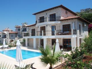 Luxurious and pleasured to welcome priceless guests ; Villa Sahin Dincel - 2