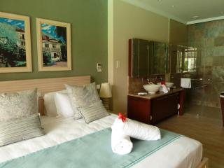 Beautifully furnished large main bedroom with en suite