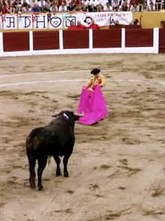 Bull fight in nearby Ceret