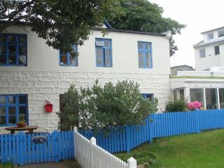 Cosy House in the Centre of Reykjavik
